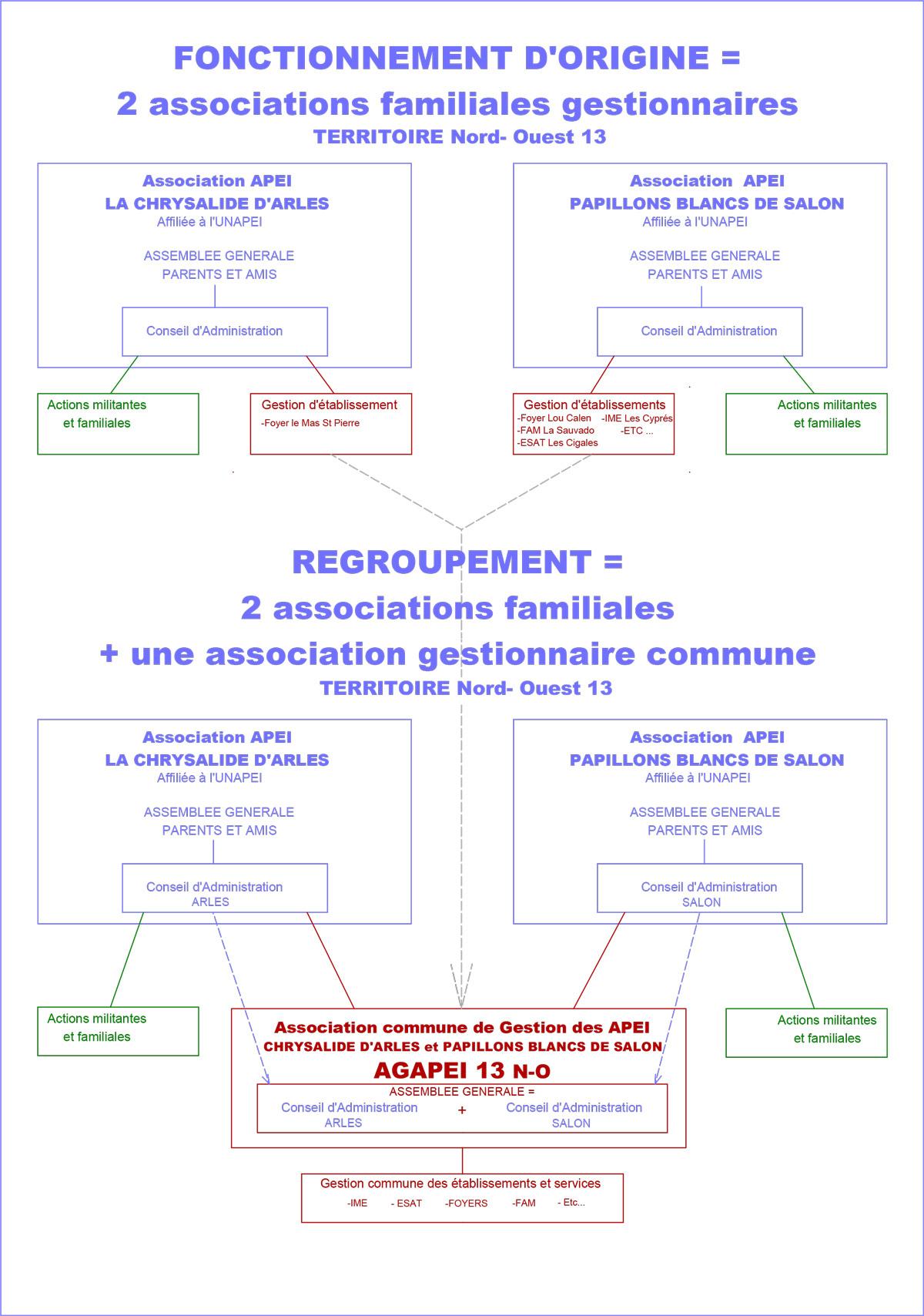 ORGANIGRAMME-REGROUPEMENT